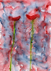 two poppies by rev-Jesse-C