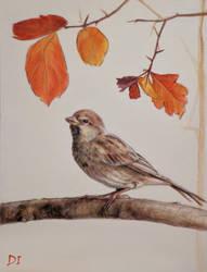 Autumn by Anaitmarihel