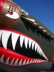 Warhawk by wbmj-photo