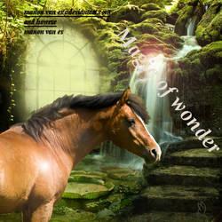 Magic Of Wonder by manonvanes