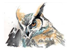 Great Horned Owl by merrilee
