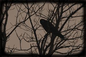 The Raven by MelynaSkye