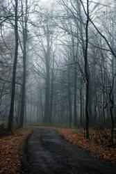 November Mist 1 by Viktorya2011