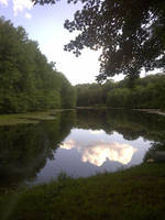 Small Pond with Reflection Stock by AliDee33
