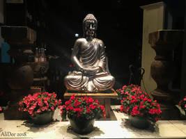 Storefront Buddha Display by AliDee33