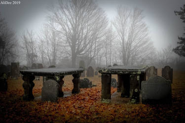 Graves in the Fog by AliDee33
