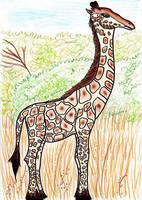 -Boring- giraffe. by Renire