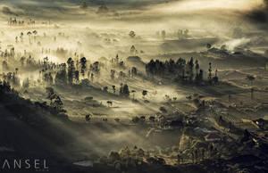 Morning Shroud by Draken413o