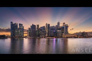 New Dawn Fades by Draken413o