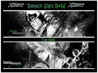 Bleach Mini Tag Wall B and W by Xziont