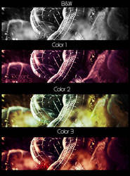 Spiderman 4 Versions by Xziont