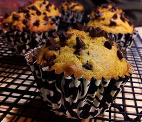 pumpkin chocolate chip muffins by agent229