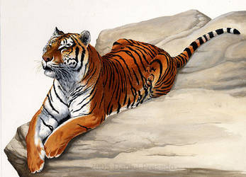 Mike the Tiger - LSU by dramenon