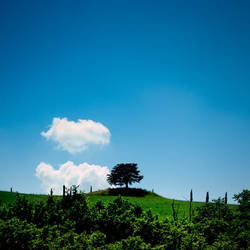 Hilltop in Tuscany by Andross01