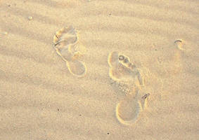 Footprints In Sand by Dace54874