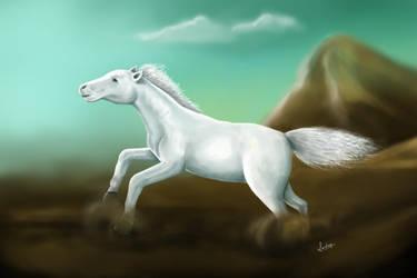 Horse by smartsendy34