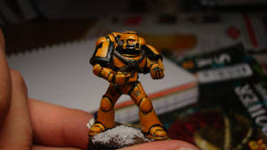 Imperial Fists WIP by Stefoserpent