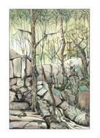 Fangorn in spring by erzsebet-beast