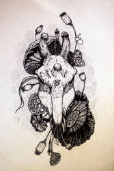 Giraffe Scull in Lotus by erzsebet-beast