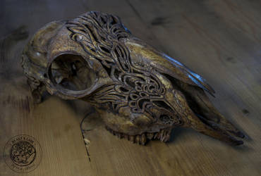 Carved sheep skull by erzsebet-beast