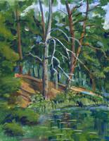 Landscape Sketch by timur-kvasov