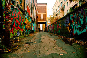 Graffiti alley by dutchh