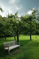garden 25 by Drezdany-stocks