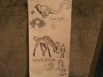 Weird  Wednesday - More Critters by SpeculaTimsauru5