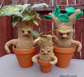 Mandrake Family by MilesofCrochet