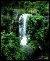 Opryland Hotel - Opry Falls by DeviantDesires