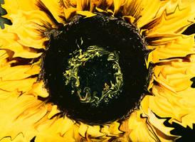 Sun_Flower by LoserLunatic