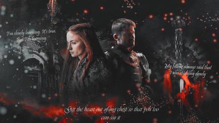 Jaime Lannister Sansa Stark by MSTKH