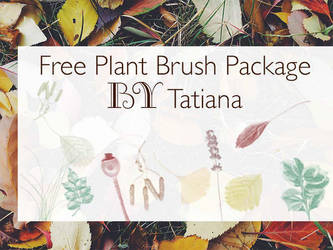 Plant Brush Set by Raisbree