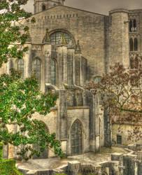 Catedral de Girona by gianf