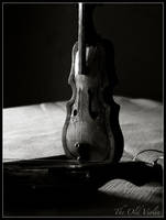 The Old Violin by encodedlogic
