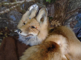 WIP Pre-made Petite Wild Vixen Soft mount by StolenFoxes