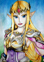Hyrule Warriors: Queen Zelda by SparklingUnicornxxx