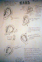 Ears tutorial by Chief-Artist-21