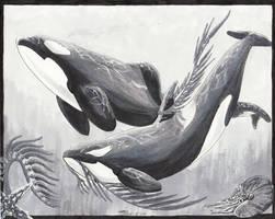 Bane and Sarrera by Atolm