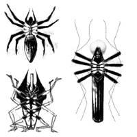 Tetramorph concept by Eskaite