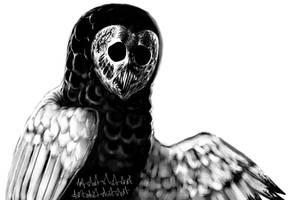 owl by Eskaite