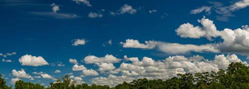 Summer Skies XVI by LongingForAutumn