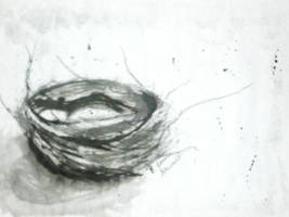 Bird's Nest by jennikins628