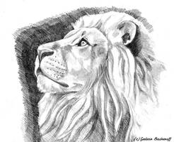 watching by G-Smilodon