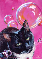 Nova with Bubbles by KathrynWhiteford