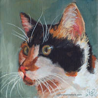 Cat Portrait - Limited Palette by KathrynWhiteford