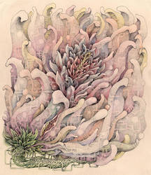 blossom ii by BrockChop