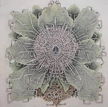 flower vii by BrockChop