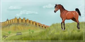 Old Walls of Avila by Alywe