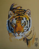Hua Zhang by HCui
